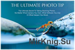 Extraordinary Vision - The Ultimate Photo Tip 2016