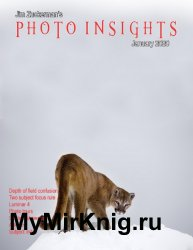 Photo Insights Issue 1 2020