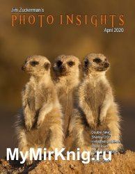 Photo Insights Issue 4 2020