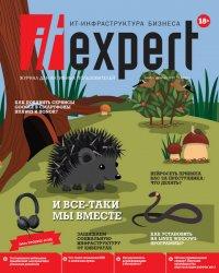 IT Expert №11 2020
